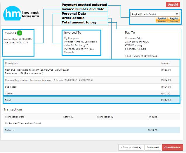 hosting invoice details